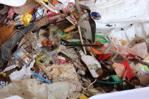Parte do lixo coletado durante a ação. (crédito: Milena Wiltemburg Pochini)